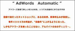 adwords automatic1.jpg